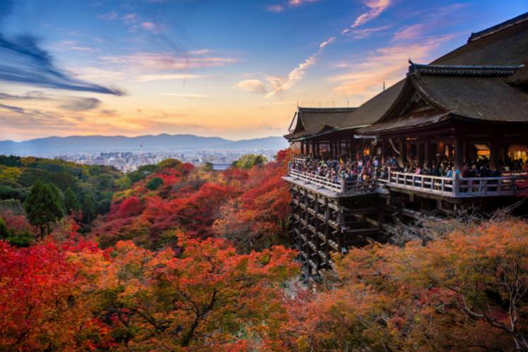 Japan is ablaze with colour in autumn. Kiyomizudera temple, Kyoto, is a top spot for leaf peeping. Image by Suttipong Sutiratanachai / Moment / Getty